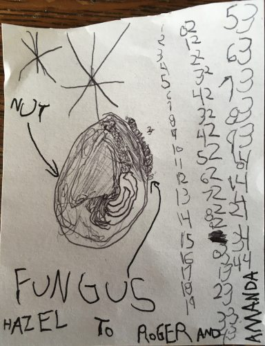 Nut with fungus and number sequence by Hazel. Email your original art to doubledip@wfmu.org to have it featured!